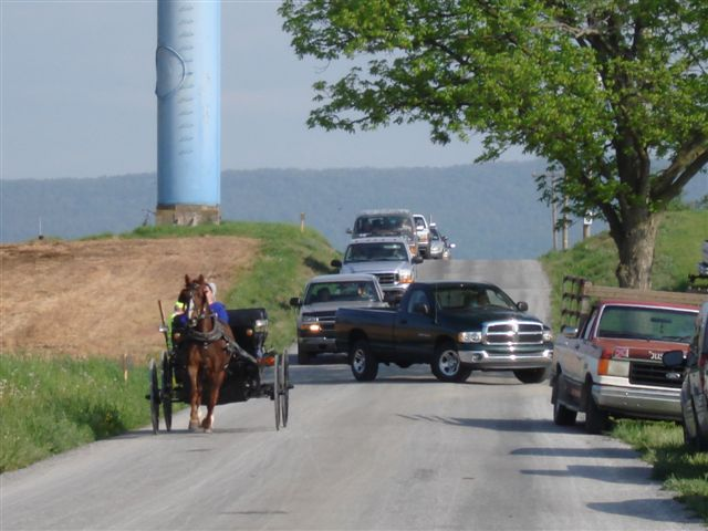 Amish buggy and cars