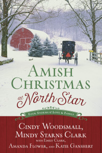 Amish Christmas at North Star