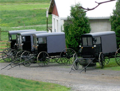 A Tidbit About Amish Life Cindy Woodsmall
