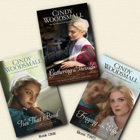 Amish of Summer Grove series