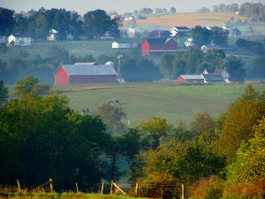 Gorgeous_Amish_farmland_204610