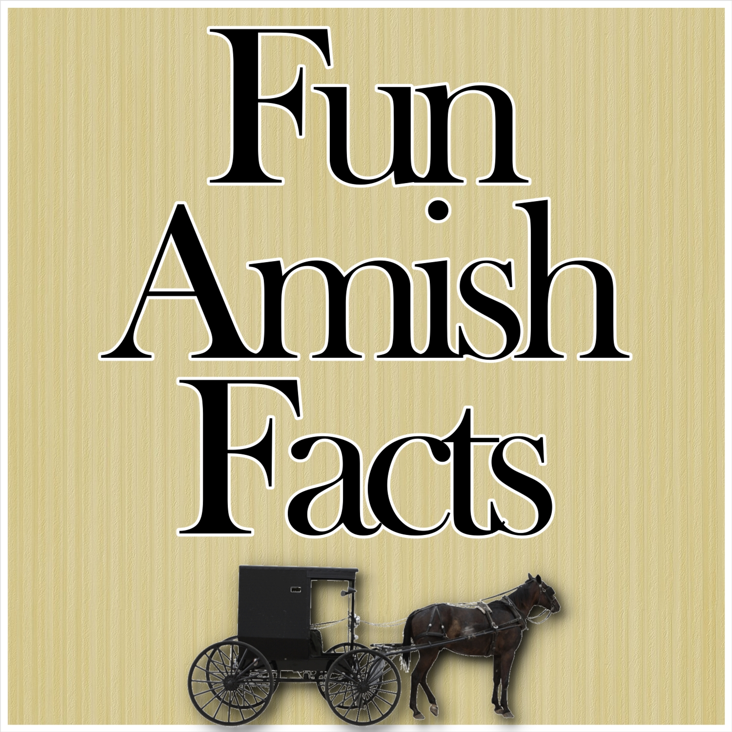 Why the Amish Dress the Way They Do ~ | Cindy Woodsmall